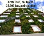 grow food