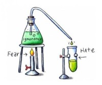 fear and hate