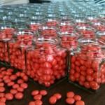 matrix red pill