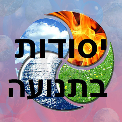 ארבעת היסודות בתנועה- דיאלוג  בין האש והאוויר למים והאדמה