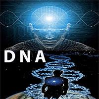 DNA ד.נ.א